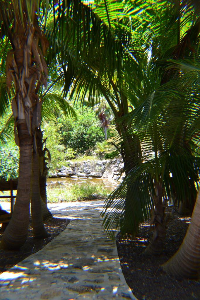 Leon Levy Native Plant Preserve - Entry Walkway