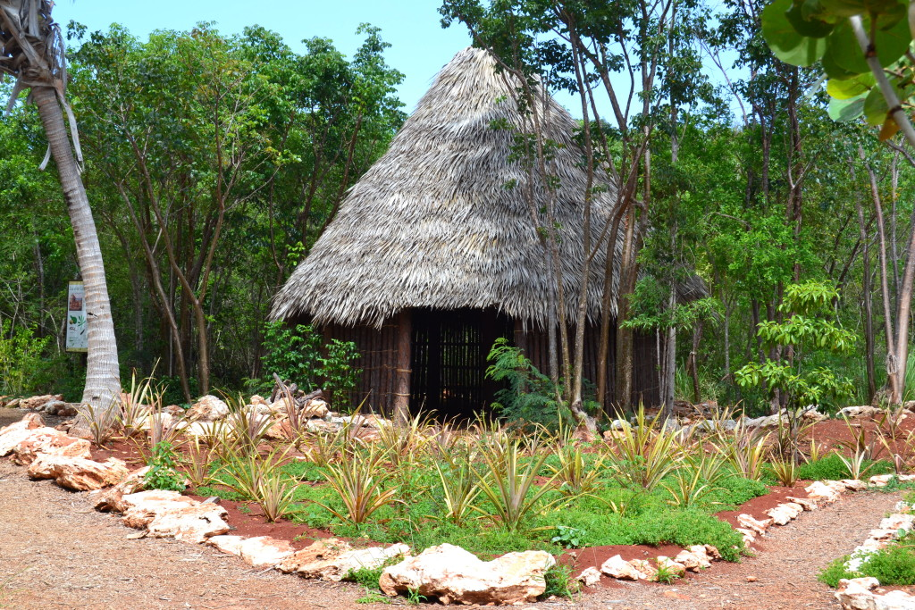 Leon Levy Native Plant Preserve - Lucayan Hut Replica