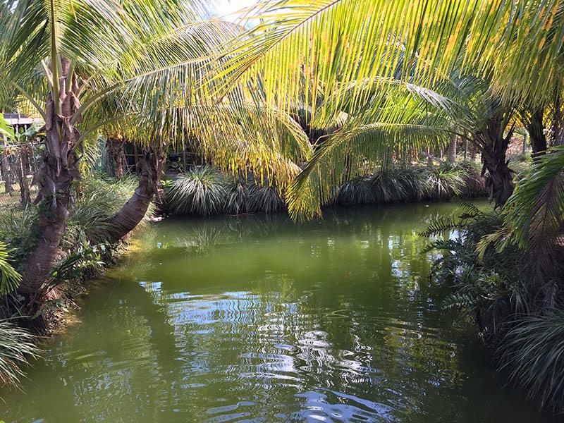 Down Too Earth Adventure Farm - View from Sinclair Island