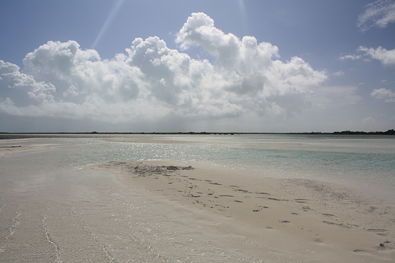 Bahamas Discovery Quest - Sandbar View