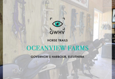 Oceanview Farm