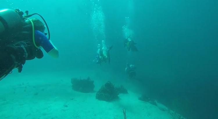 Scuba Certification - divers