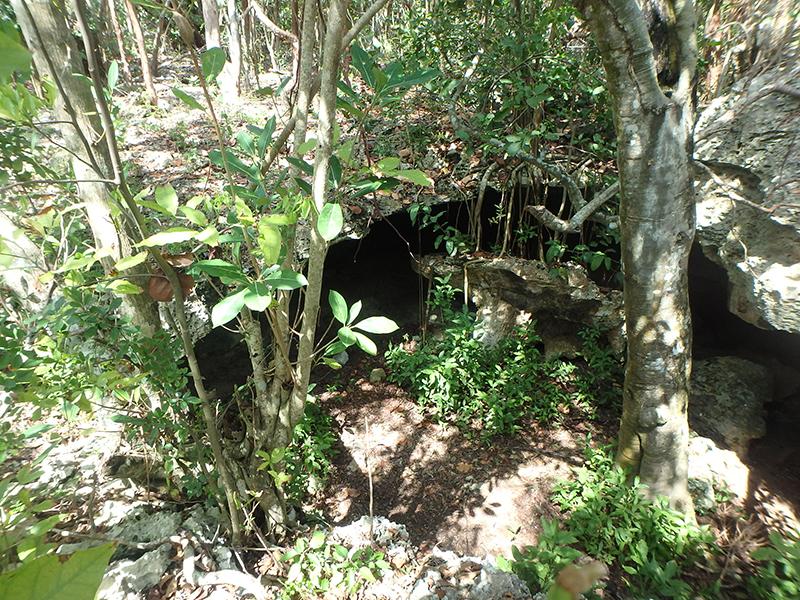 Morgans Bluff & Captain Henry Morgans Cave - Cave Entrance