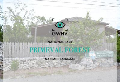 Primeval Forest National Park